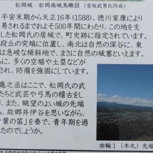 亀之丞(井伊直親)ゆかりの地と桜守の旅(3)松岡城址
