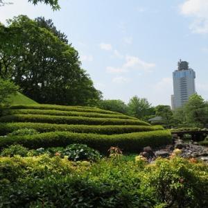 駿府城(5)紅葉山庭園