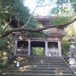 2019年10月・第31番・竹林寺にて、朝一の参拝。