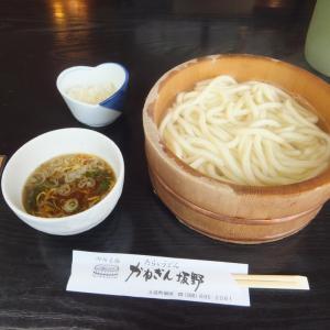 阿波市土成町宮川・かねぎん坂野でたらいうどんの昼食。