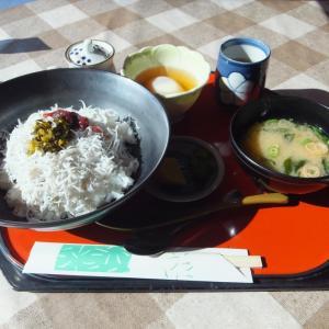 安芸市赤野・レストラン矢流で釜あげちりめん丼の昼食!