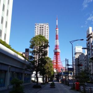 僕だけの東京マラソン