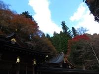 貴船神社(6)結社