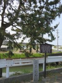 頼朝の愛した新居町(5)浜名橋跡