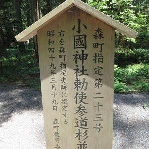 小國神社(2)飯王子社~鉾執社