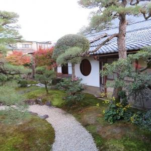 京を巡る(11)妙顕寺 光琳曲水の庭