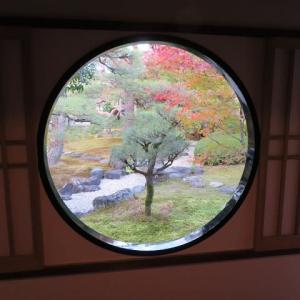 京を巡る(12)妙顕寺 光琳曲水の庭 その弐
