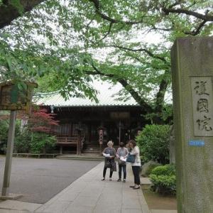 谷中めぐり(2)護国院