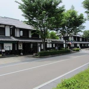 石田三成ゆかりの地(9)彦根の宗安寺