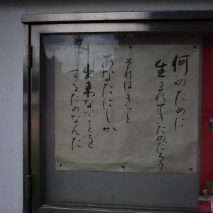 大阪鍼灸マッサージ協同組合学術講習会『巻き肩を解消する筋ツイスト・腱ツイスト』終えました