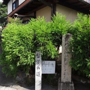 2020年の干支の狛ねずみさんがいらっしゃる―京都大豊神社