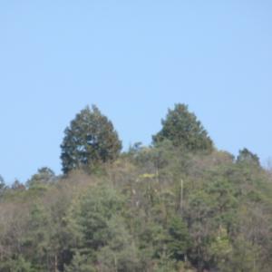 小野小町の痘瘡を癒した 瘡神さんと小町滝