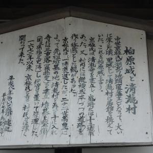 圧巻!立ち並ぶ歴代京極当主の宝篋印塔―近江清瀧 徳源院