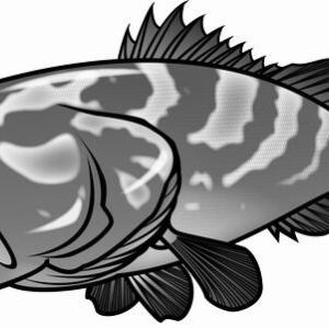巨大根魚カンナギを狙う!2021