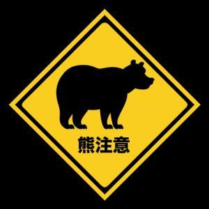 熊出没注意、またも被害者が