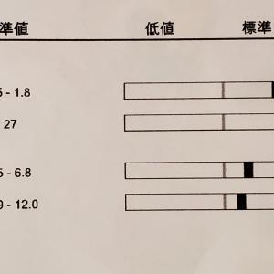 ワクチン等で動物病院とアベノマスクと新作マスク♪ 2020/6/13