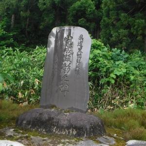 20190619 熊さんに出会った長井葉山