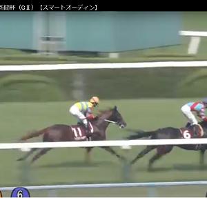 京都新聞杯の連対確率の高い枠とレース運び【5月4日の馬券予想】