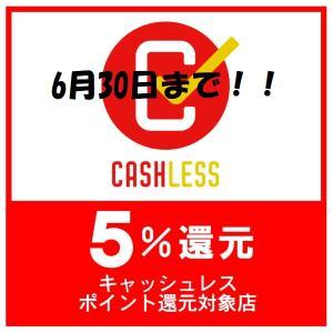 キャッシュレス決済5%還元は6月30日(火)までです!