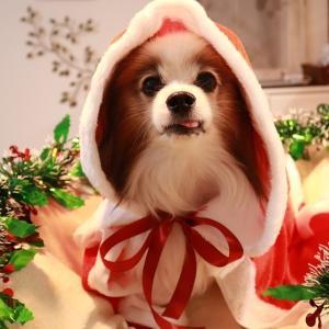~☆メリークリスマス☆~