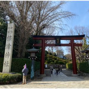 根津神社の光景
