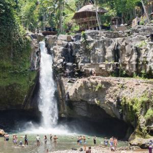 Ubud-3, Indonesia 〜トゥグヌンガンの滝と、世界一高価なコピ・ルアックに会いに~