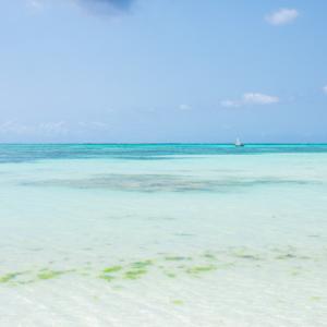 Zanzibar-2, Tanzania 〜ザンジバル・ヌングイの遠浅ビーチでまったりdays~