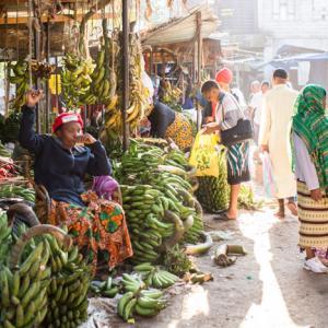 Arusha, Tanzania 〜いよいよタンザニア本土アルーシャへ。サファリ会社を探せ!~