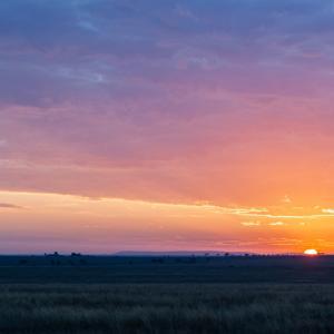 Serengeti-2, Tanzania 〜チーターと遭遇!セレンゲティの朝日を浴びて~