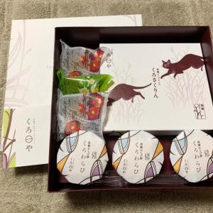 第2,729回(2020.7.20)東京の孫息子から嬉しいお土産が届く!