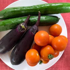 第3,098回(2021.7.24)新鮮野菜のいただき物を料理する