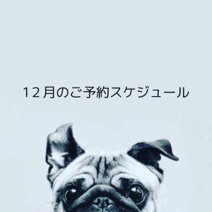 【12月ご予約スケジュール】