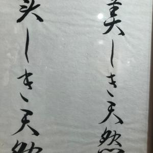鷺山啓輔個展、新作「美しき天然」