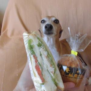 どんぐりさんのスモークサーモン入りサンドイッチ