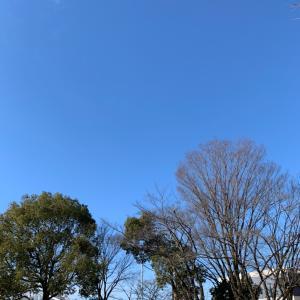 春日井アセスメント1
