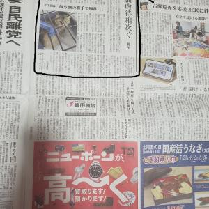 私の ニャンコ活動が、「Yahoo!ニュース」 に出た!