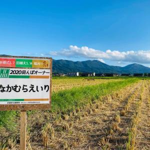 「なかむらえいり米」  京都与謝野のお米★