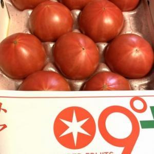 スーパーフルーツトマト2020