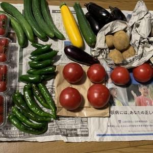かんちゃんファームの野菜