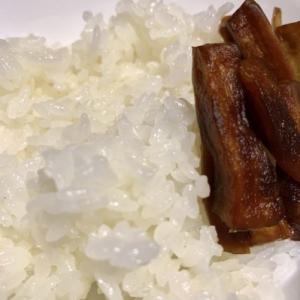高野の麻婆豆腐