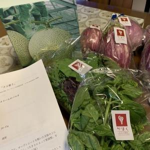 河北の茄子と野菜が届きました