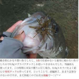 詳細、休暇で釣り(後編)
