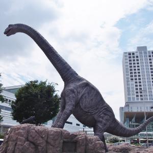 【福井】 レトロな商店街を歩こう@福井駅前