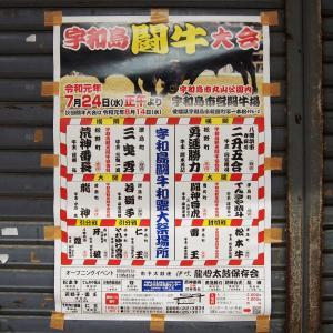 【愛媛】 宇和島で闘牛を見てきた。