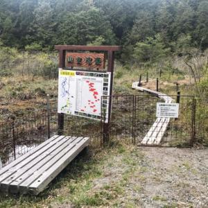 山室湿原 希少な生物が生息する湿原散策を楽しもう!