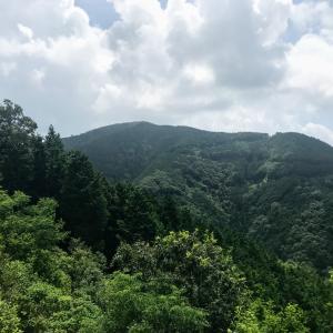 密かに盛り上がる本巣七名山 大茂山 コボ山~西尾根