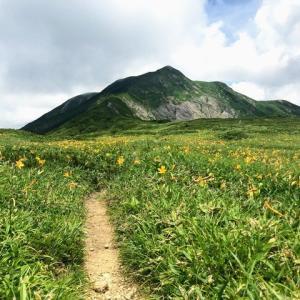 多様な高山植物が咲き誇る健脚ルート 三ノ峰・別山 上小池ルート