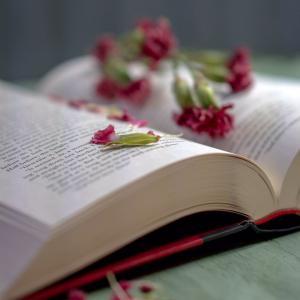 ✴︎奇跡的にこれを見るあなたへ贈る、メッセージ♪(4)