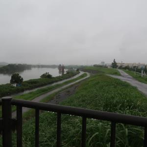 梅雨時のウォーキングから自転車弄りまで♪