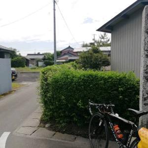 駒塚道散歩
